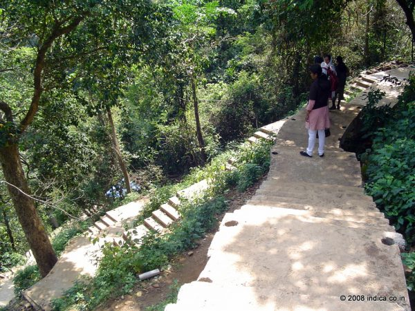 Trek path to Jog Falls. Beyond a point, the constructed steps ends, and you have to use the rocky trails to reach the base of Jog Falls.
