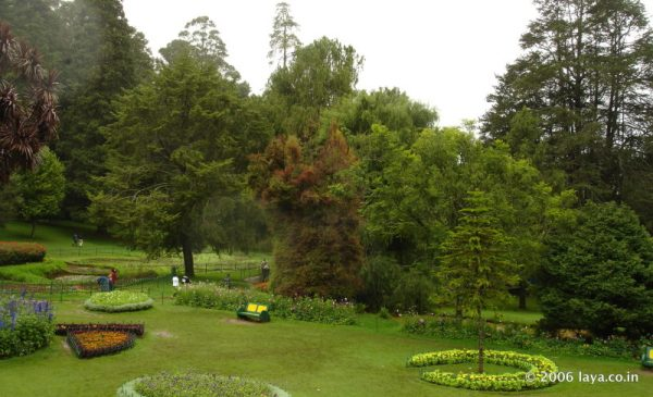 Lawn in Botanical Garden at Ooty
