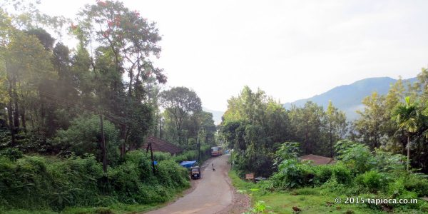 Road to Thirunelli Temple