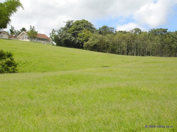 Guest House area in Indira Gandhi National Park.