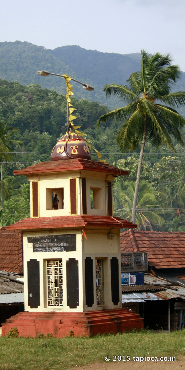 Achankovil village, seen in the background is the western Ghats forests