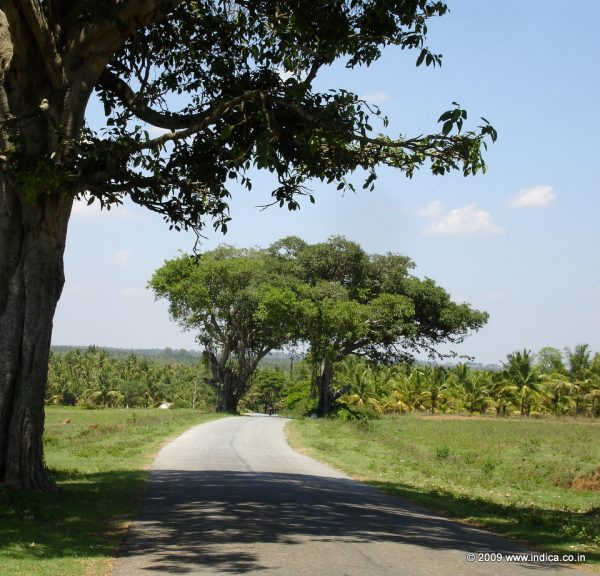 Road to Nuggehalli from Channarayapattna