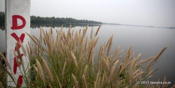 Cherai Backwaters