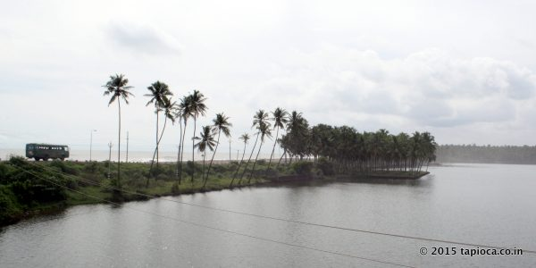 Kappil-Backwaters