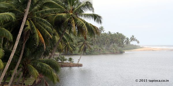 Kappil Backwaters and the beach in the background