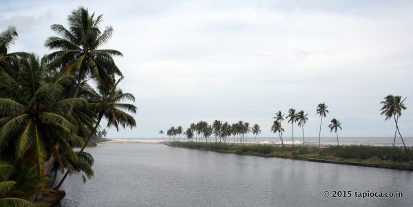 Kappil Beach and Backwaters
