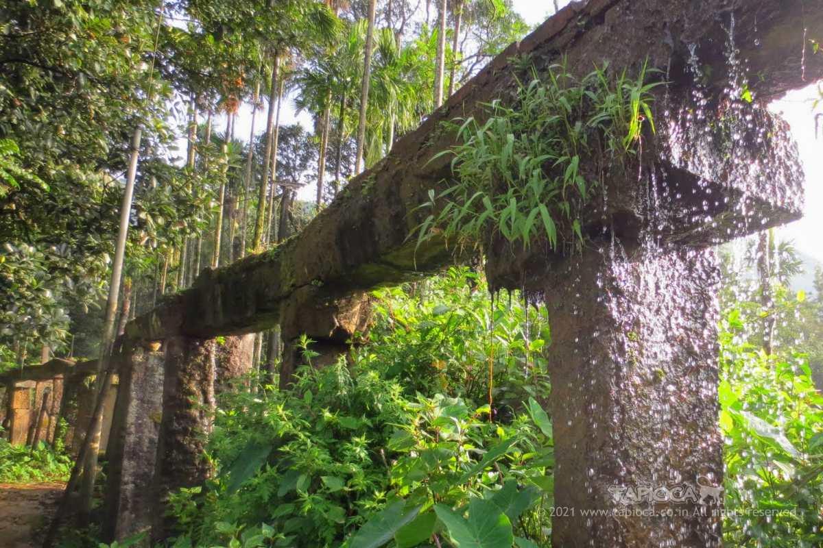 Aqueduct at Thirunelli Temple