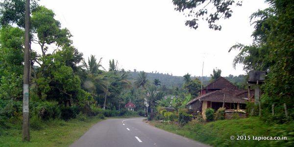 Road Near Pulpally