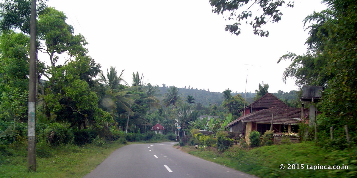 Road Near Pulpally